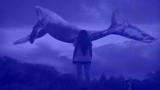 Mavi Balina Oyunu 12 Yaşındaki Çocuğun Canını Aldı